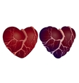 Two heart shapes vector image vector image