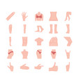 body organ flat icon pack vector image