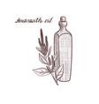 drawing amaranth oil