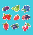 fresh and juicy berries isolated labels vector image vector image