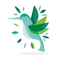 green hummingbird feather foliage nature fauna vector image