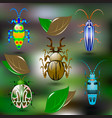 set of colorful beetles vector image vector image