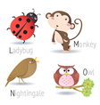 Alphabet with animals from L to O vector image