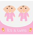 bashower card its a twins girls vector image vector image