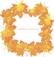 Design template autumn maple leaves vector image