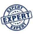 expert blue grunge round vintage rubber stamp vector image vector image