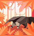 flat geometric jungle background with anteater vector image vector image