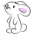happy bunny on white background vector image vector image