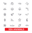 sea animals ocean creatures dolphin octopus vector image vector image