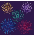 bright fireworks vector image