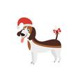 christmas beagle - cute cartoon dog wearing a vector image vector image