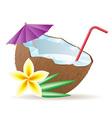 coconut 05 vector image vector image