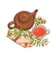 goji tea vector image