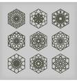 Hexagon Ornament Set vector image vector image