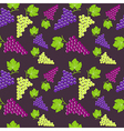 Seamless vintage background with bunch of grapes vector image vector image