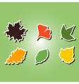 set of color icons with different leaves vector image