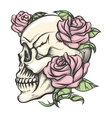 Skull with Roses vector image vector image