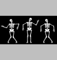 white dancing skeletons vector image vector image
