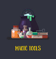 witch cauldron and magic books flask halloween vector image