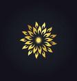 abstract gold star circle logo vector image vector image