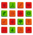 buttons of vegetables and fruit vector image vector image