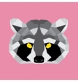 Grey and black low poly raccoon vector image