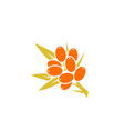 sea buckthorn berry logo vector image vector image