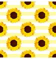sunflower flower pattern vector image