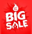 big sale banner template hot price concept splash vector image