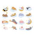 collection cartoon sleeping animals vector image