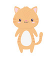 cute tiger animal cartoon isolated icon vector image