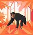 flat geometric jungle background with chimpanzee vector image vector image
