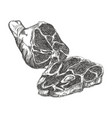 meat steak sketch ham for grill and barbecue vector image