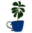 plant in blue pot on white background vector image vector image