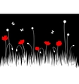 poppy meadow vector image