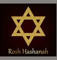 rosh hashanah greeting card with star of david vector image