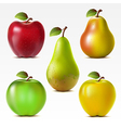Set of apples and pears vector image vector image