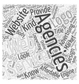Affordable Advertising Agencies Word Cloud Concept vector image vector image