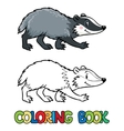 Coloring book of little funny badger vector image vector image