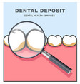 dental deposit - row of tooth under magnifying vector image vector image