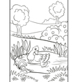 Kind duck and little cute duckling swim on the pon vector image vector image