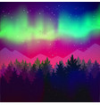 landscape with northern lights and spruce forest vector image vector image