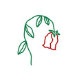 wilted rose flower faded plant sign dead and vector image vector image