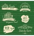 Organic food label and logos set Farm Fresh label vector image