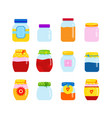 big set jars for homemade jam or juice jar vector image