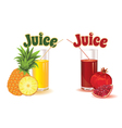 glasses for juice from pineapple and garnet vector image