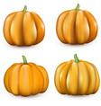 orange halloween 3d pumpkins on white vector image