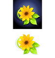 Sunflowers vector | Price: 3 Credits (USD $3)