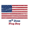 USA flag vintage 14 June vector image