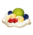 Whipping cream and berries vector image vector image